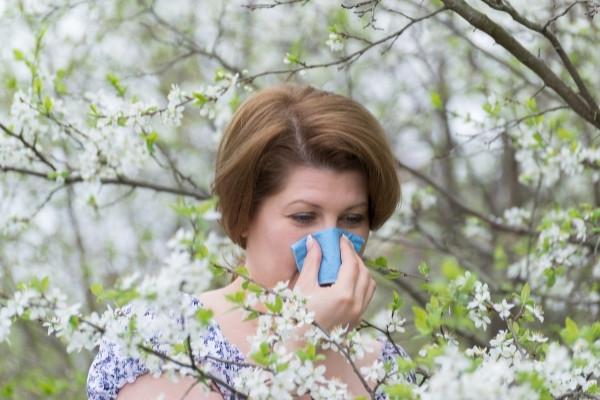 สาเหตุที่ทำให้เกิดโรคจมูกอักเสบจากภูมิแพ้ - เกรสดอกไม้